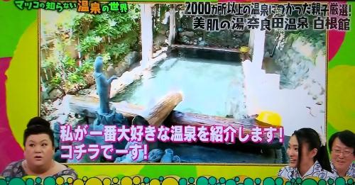 奈良田温泉白根館